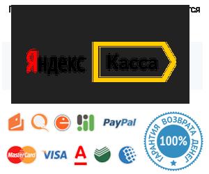 Прием и обработка заказов осуществляется сервисом для приема платежей  Яндекс.Касса. WPTraining.ru